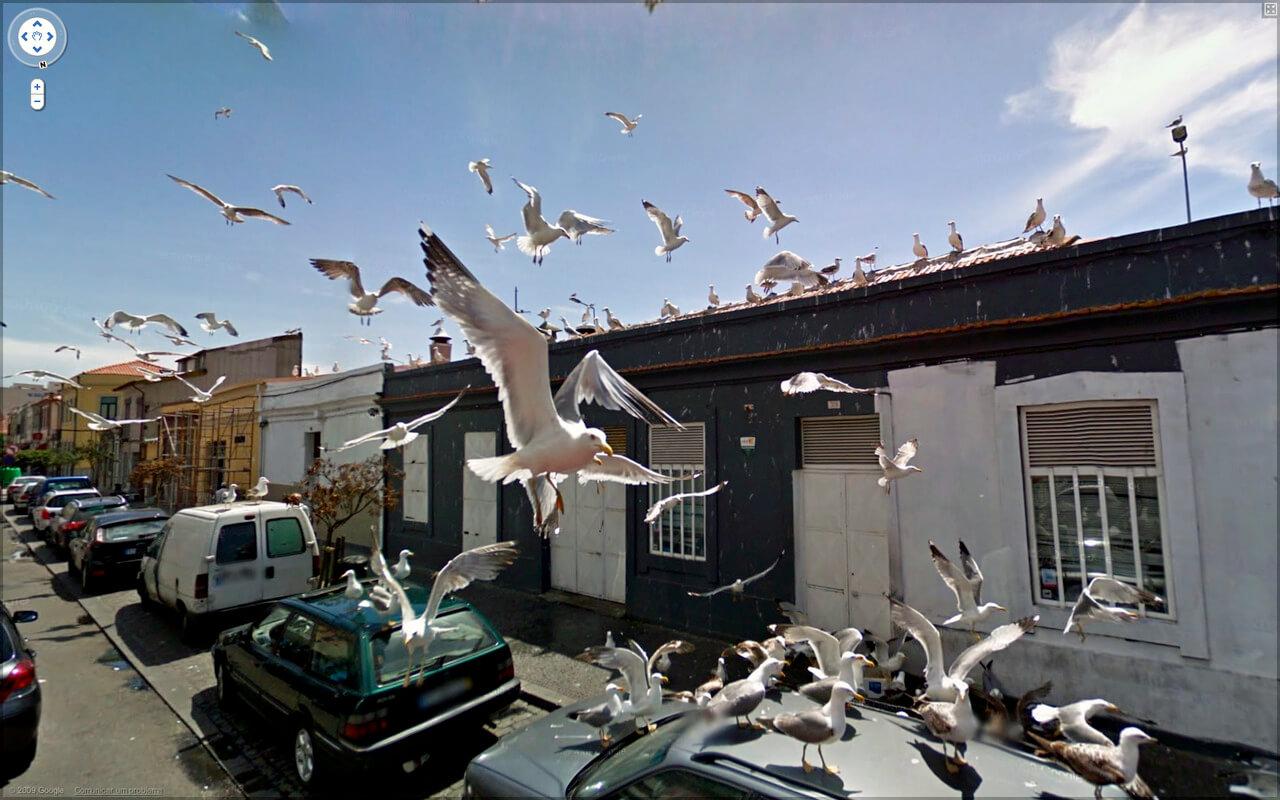 google-streetview-kurios-015