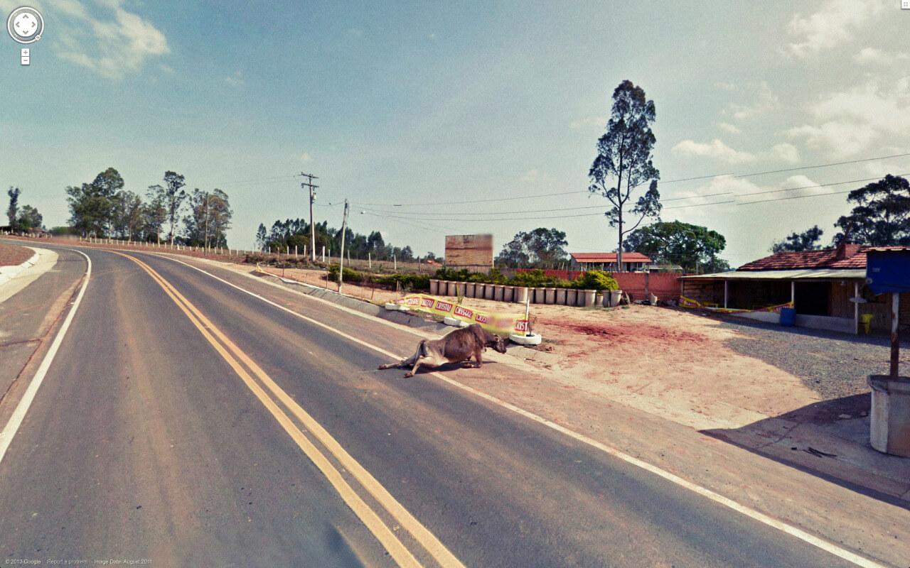 google-streetview-kurios-060
