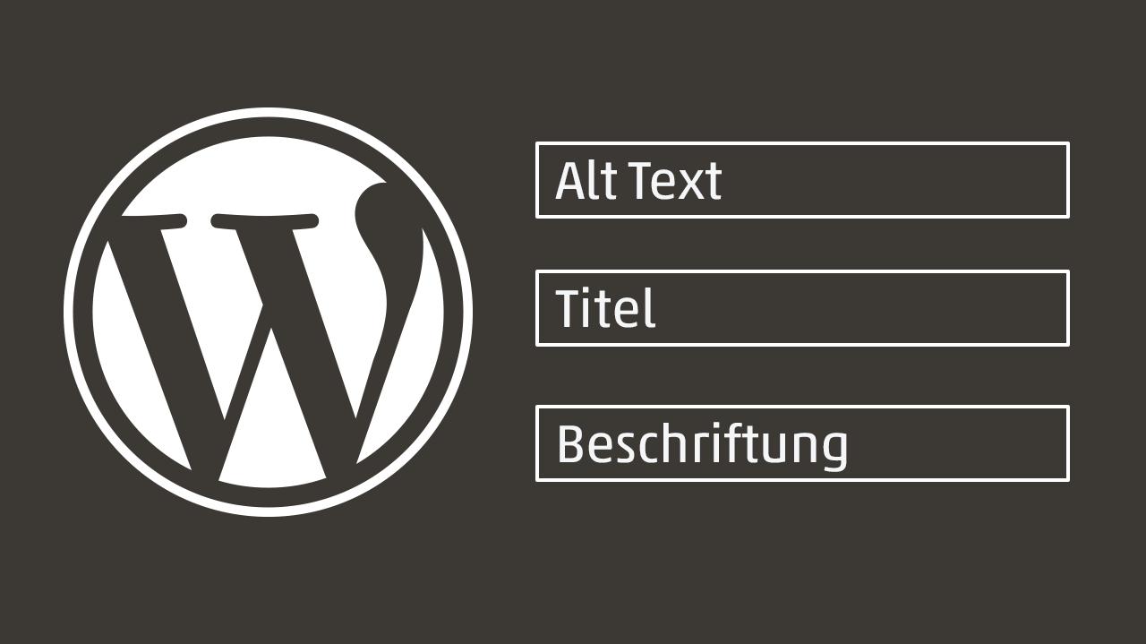 Titelbild WordPress Bild-Metadaten